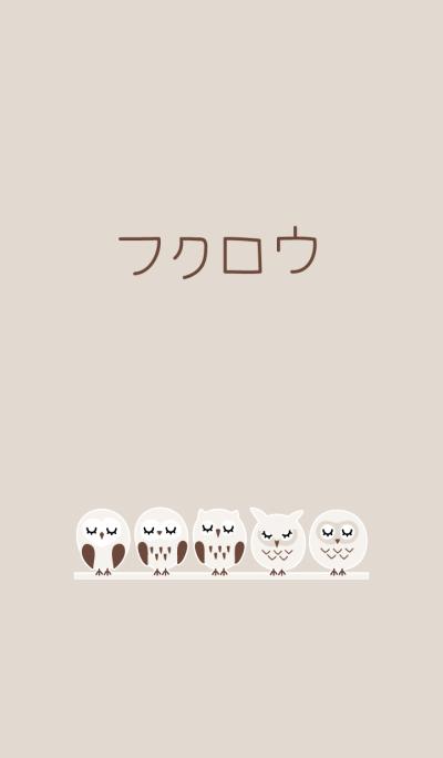 Owls brown