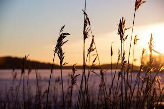 Lohjan talvi - visit south coast finland