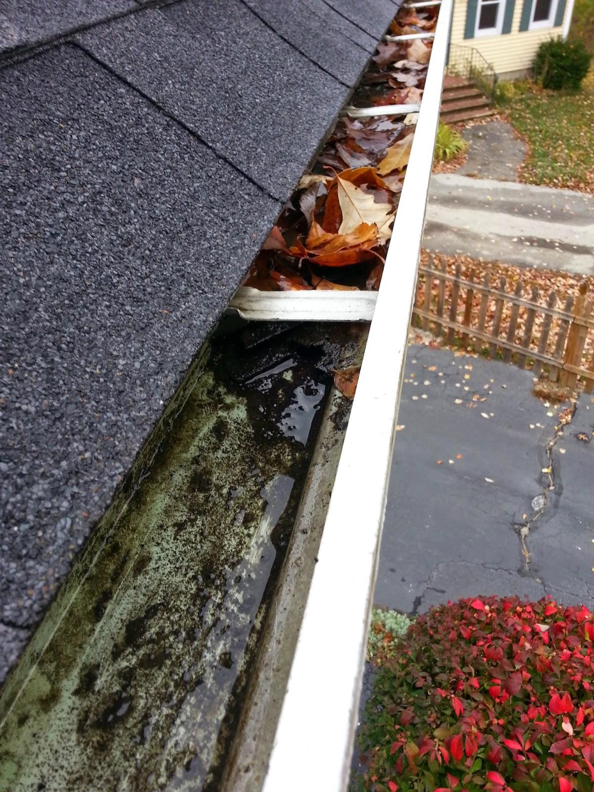Gutter Cleaning Services Nh Hunsickerpremierhomeservices