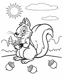 Cute Squirrel And Nuts Animals Coloring Pages Online