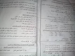 ورقة امتحان اللغة العربية الصف الثالث الاعدادى محافظة الجيزة الترم الثانى 2017