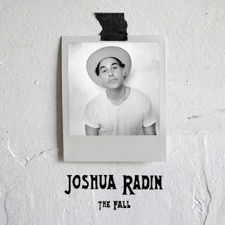 Joshua Radin - The Fall (2017) - Album Download, Itunes Cover, Official Cover, Album CD Cover Art, Tracklist