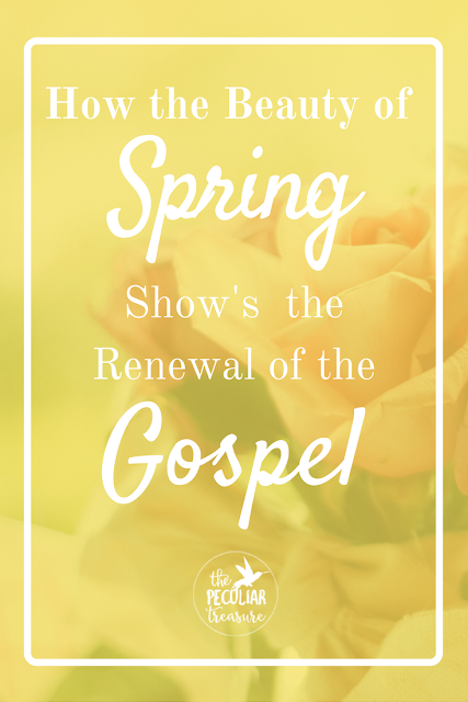 We can see the renewal that the Gospel brings by looking at what happens in Spring. What was cold and dark suddenly becomes beautiful and thriving. That is what Jesus does for us.