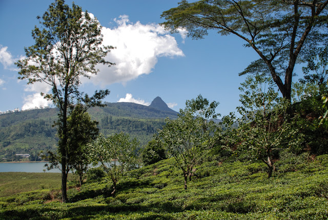 Climbing Adam's Peak Sri Lanka