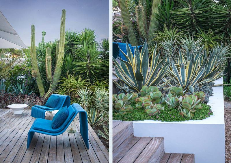 Jardín con plantas suculentas, diseñado por el Anthony Paul en Cap d'Antibes,  Alpes Marítimos, sur de Francia