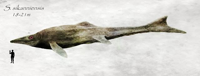 shastasaurus mahluk prasejarah yang mengerikan yang pernah hidup