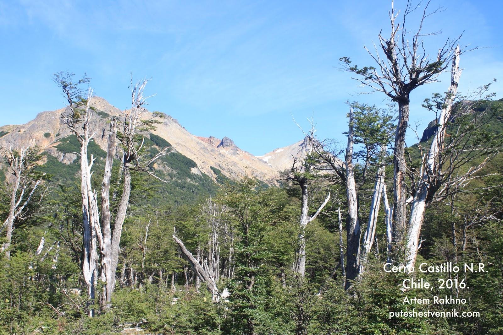 Лес и горы в Серро-Кастильо