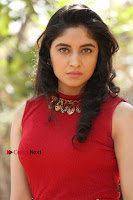 Telugu Actress Zahida Sam Latest Pos in Red Gown at RF Films New Movie Opening  0093.JPG