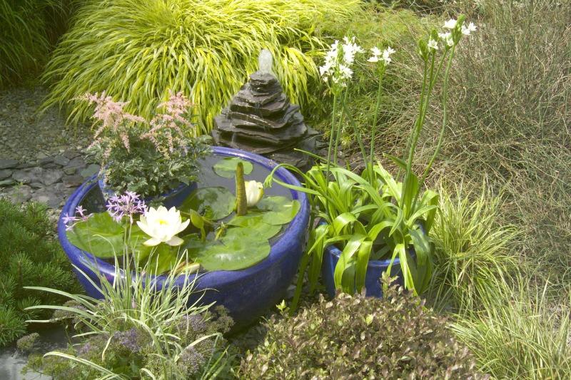 10 plantas para jardines en sombra guia de jardin for Plantas de exterior que no necesitan sol