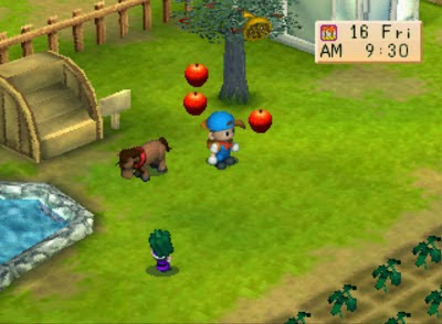 free download harvest moon back to nature bahasa indonesia