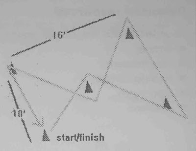 Procedure for Conducting The Zig-Zag Test