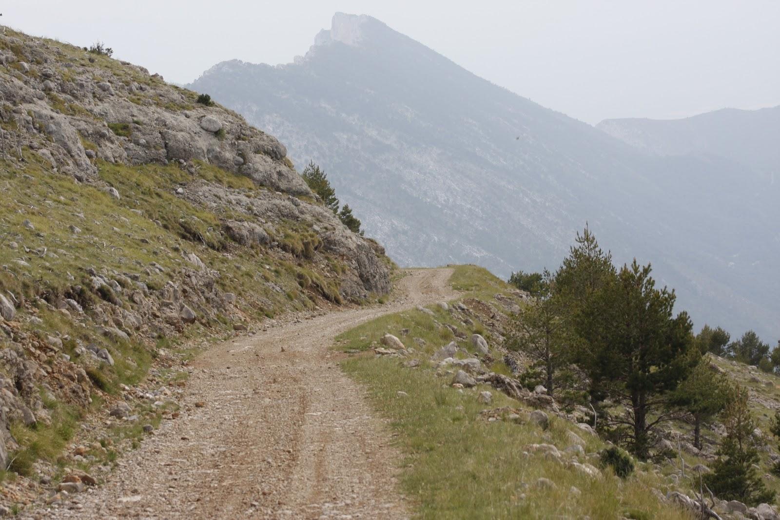 Birding lleida expedicions blog de viajes abril 2012 for La serra progetta le planimetrie