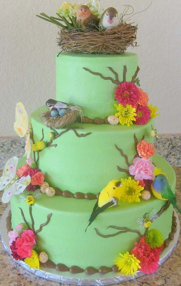 Outstanding Life Hacks Birthday Cakes With Bird Theme Funny Birthday Cards Online Alyptdamsfinfo