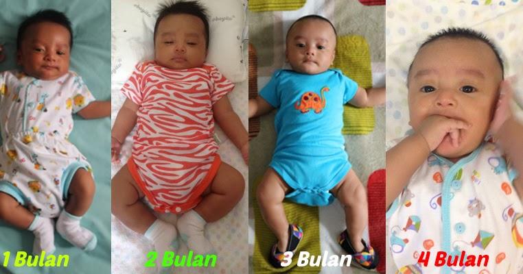 Perkembangan Bayi 0 4 Bulan Novarty