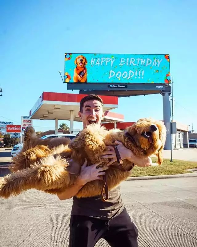 Guy Rented A Billboard To Share His Dog's Birthday With The World