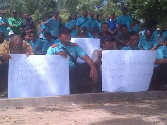 Buruh PTPN7 Cinta Manis mogok Kerja
