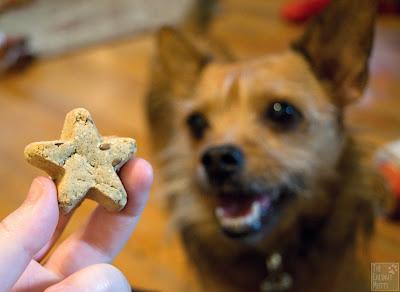 Jada and her Santa Snacks