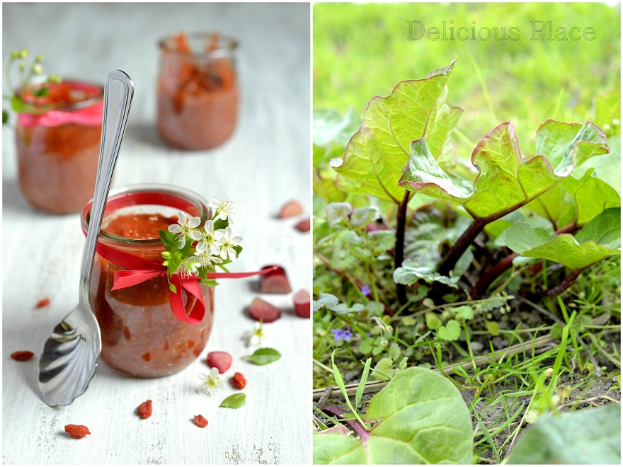 Mus rabarbarowy z jagodami goji