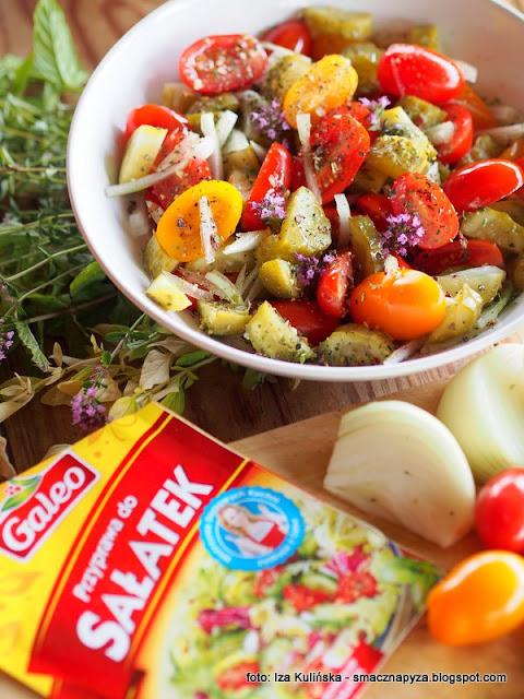 salatki na grilla, warzywa, dodatek, grillowanie, grilluj ze smaczna pyza, galeo, przyprawy do dan z grilla, przyprawa do salatek