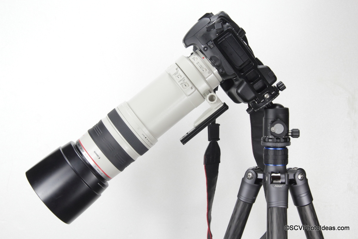 Canon EOS 7D w/ Grip + EF 100-400 L IS USM clamped on Sunwayfoto DB-36DDH by L bracket