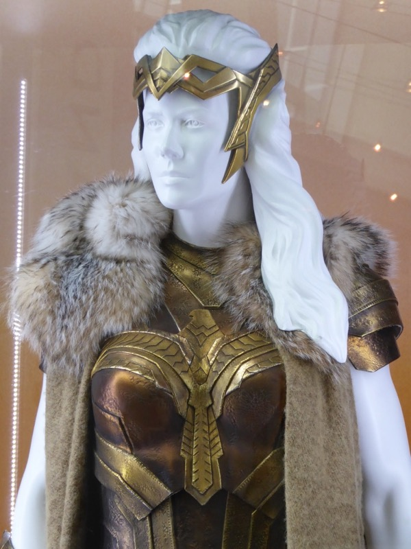 Queen Hippolyta Wonder Woman costume