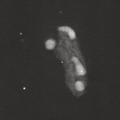 2014-03-31+NGC+4449.jpg