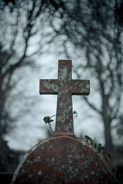 A cross on a tombstone being choked by ivy - Marie Carr Photography
