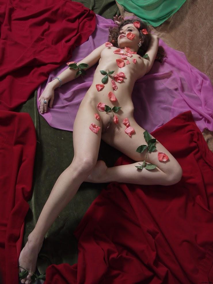 766010 [Zemani] Nikola - Petals of Roses