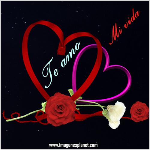 imagens de flores y corazones de amor