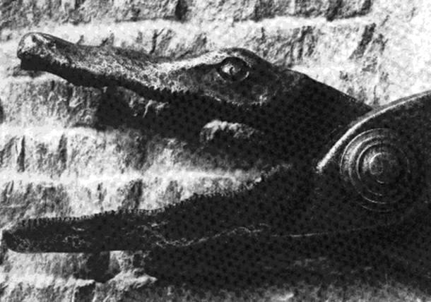 25 การทรมานโหดที่สุดในโลก กรรไกรจระเข้ (Crocodile Shears)