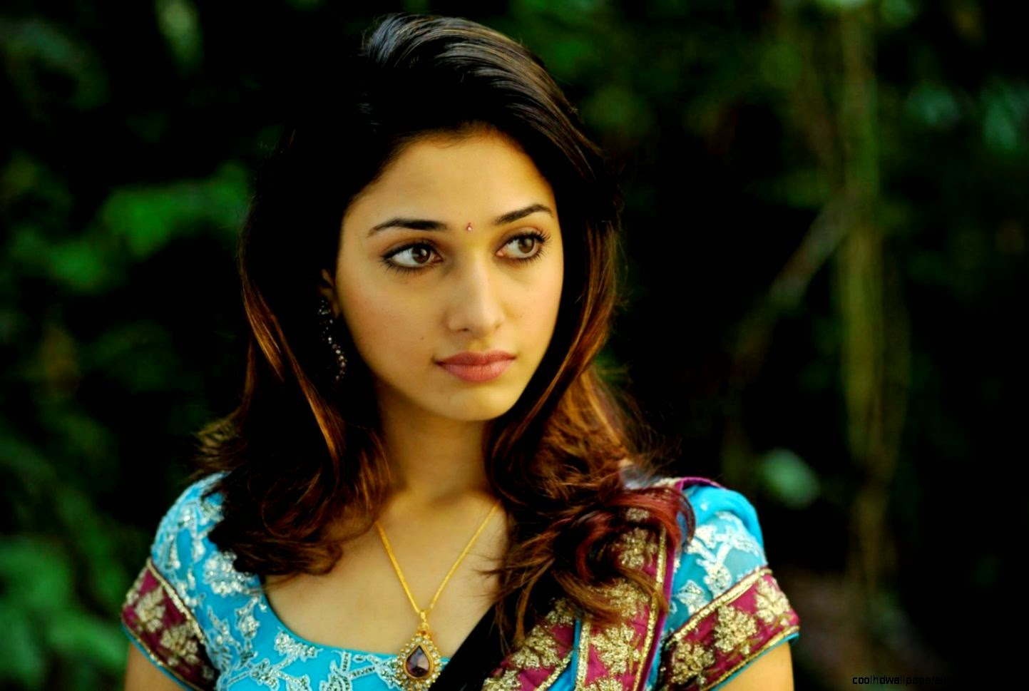 Tamanna In Tadakha Halfsaree: Tamanna In Saree Hd Wallpaper