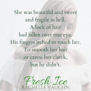 romance author rachelle vaughn