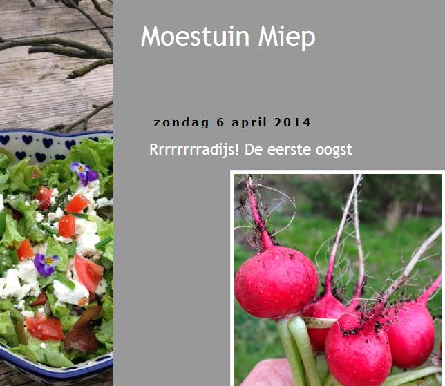 Moestuin miep tuinblog