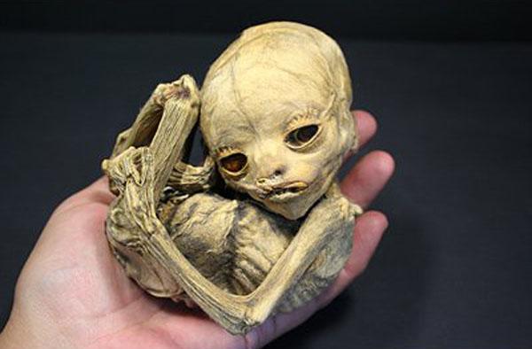 la momia más pequeña del mundo