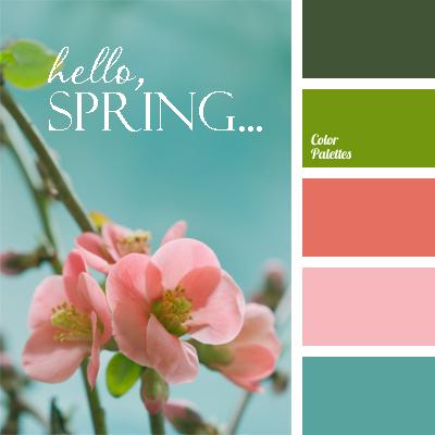 Завдання 56, Hello,spring