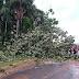 Temporal de Granizo e Chuva Forte Provoca Estragos Destelhas Casas e Derrubas