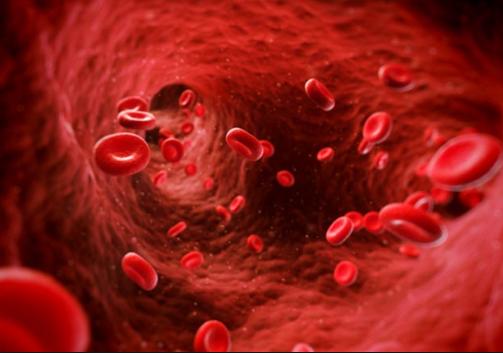 Hemofili Nedir? Nedenleri,Belirtileri,Tedavisi