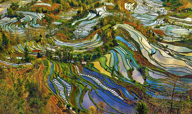 Honghe Hani Rice Terraces, Honghe