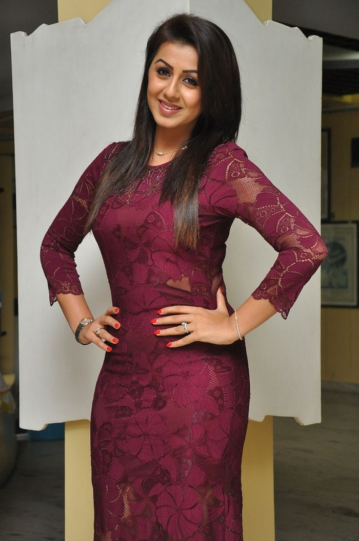 Actress Nikki Galrani In Brown Dress Awesome Photos