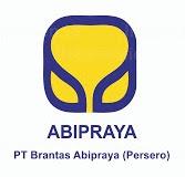 Lowongan Kerja PT Brantas Abipraya (Persero) S1 Berbagai Jurusan