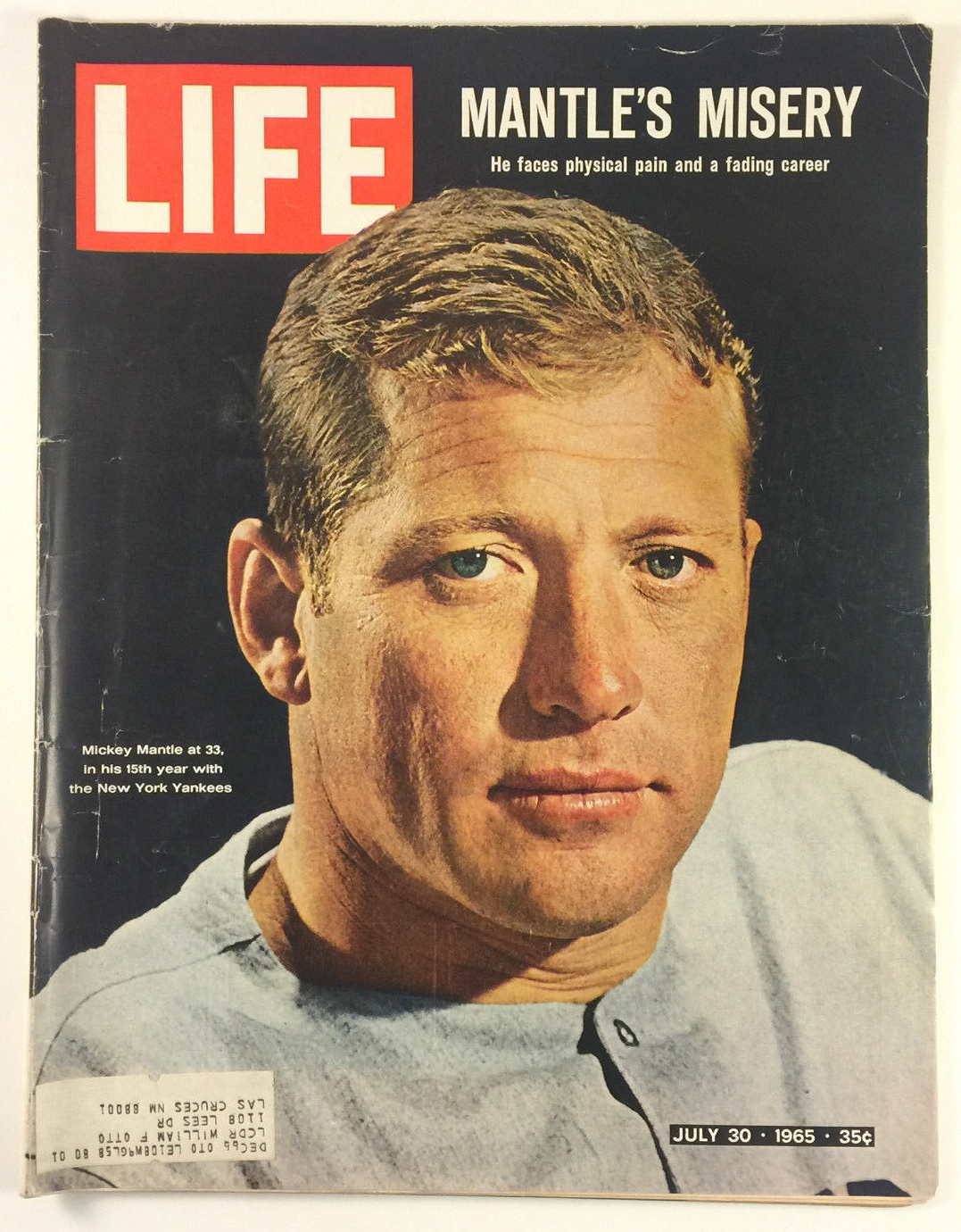 Image result for Mickey Mantle blogspot.com