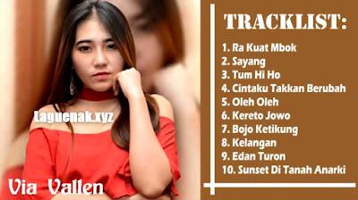 21 Lagu Dangdut Koplo Sera Via Vallen Mp3 Terbaik Bulan Februari 2018 Terbaru