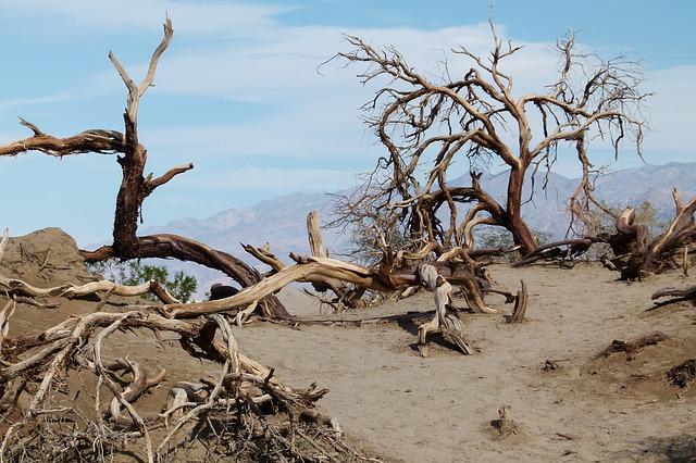 desert pic, desert image, death valley pic