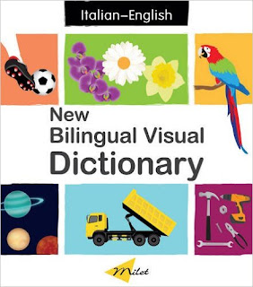 New Bilingual Visual Dictionary PDF