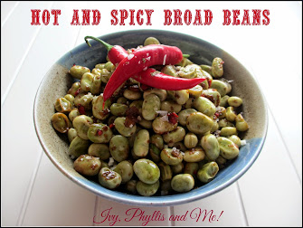 HOT AND SPICY BROAD BEANS