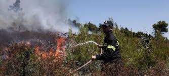 Πρέβεζα: Σύλληψη 73χρονου Για Πυρκαγιά Από Αμέλεια Στην Πρέβεζα