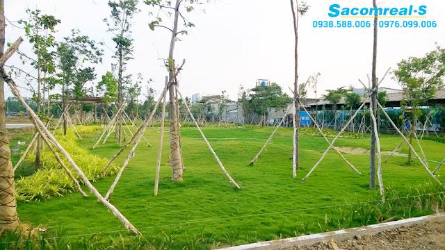 Jamona Golden Silk có tổng diện tích công viên cây xanh lên đến 18000m2.