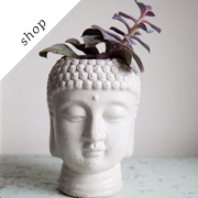 Buddha Head Planter by brooklynglobal