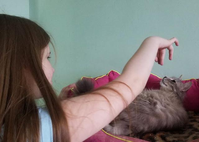 Самарский детский эколого-биологический центр: а вот и кошка!