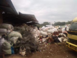 Usaha Pengumpul Plastik Bekas